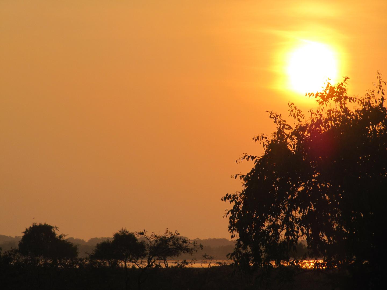 Sonnenuntergang im Yala Nationalpark