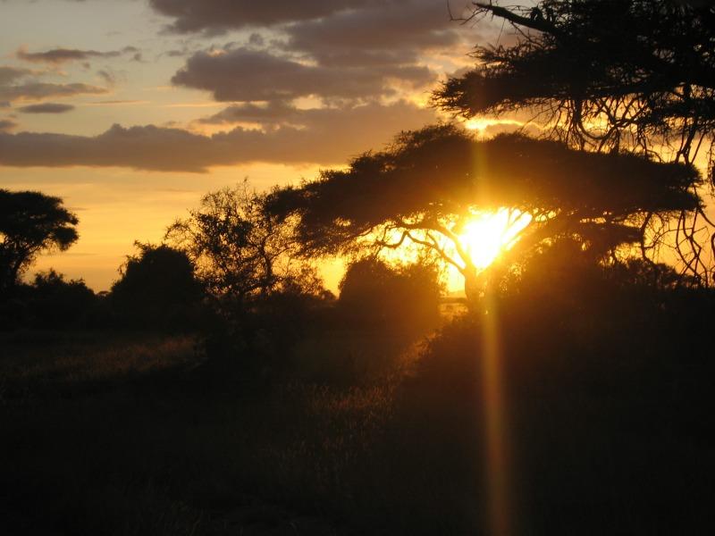 Sonnenuntergang in Amboseli