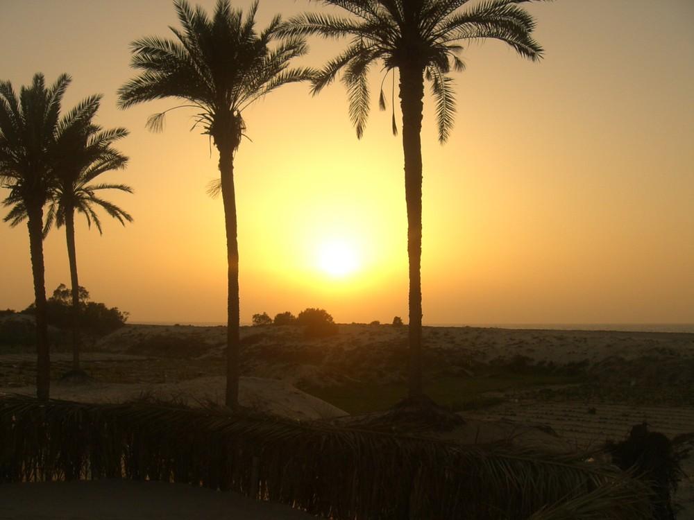 Sonnenuntergang in Arisch