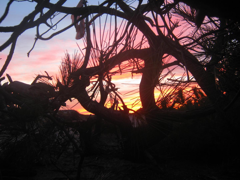 Sonnenuntergang in den Dünen