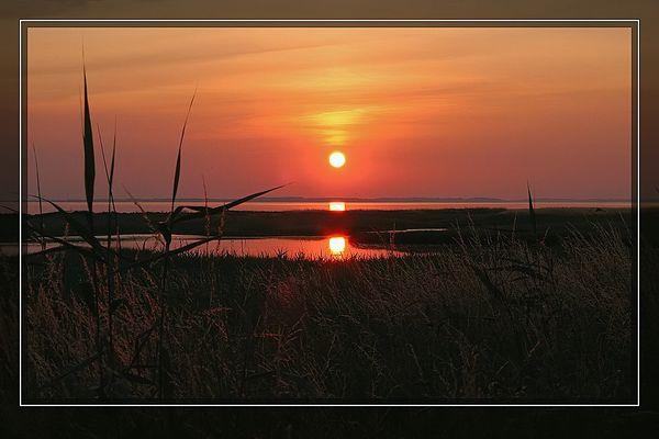 Sonnenuntergang in der Geltinger Birk