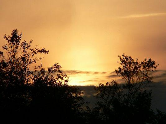 Sonnenuntergang in der Greunen Stee