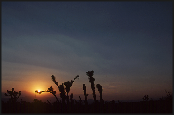 Sonnenuntergang in der Halbwüste