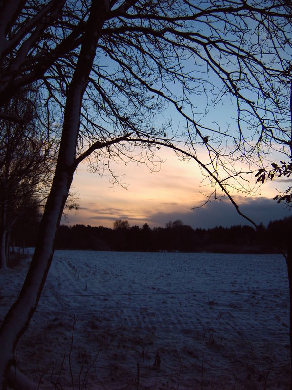 Sonnenuntergang in der Heide