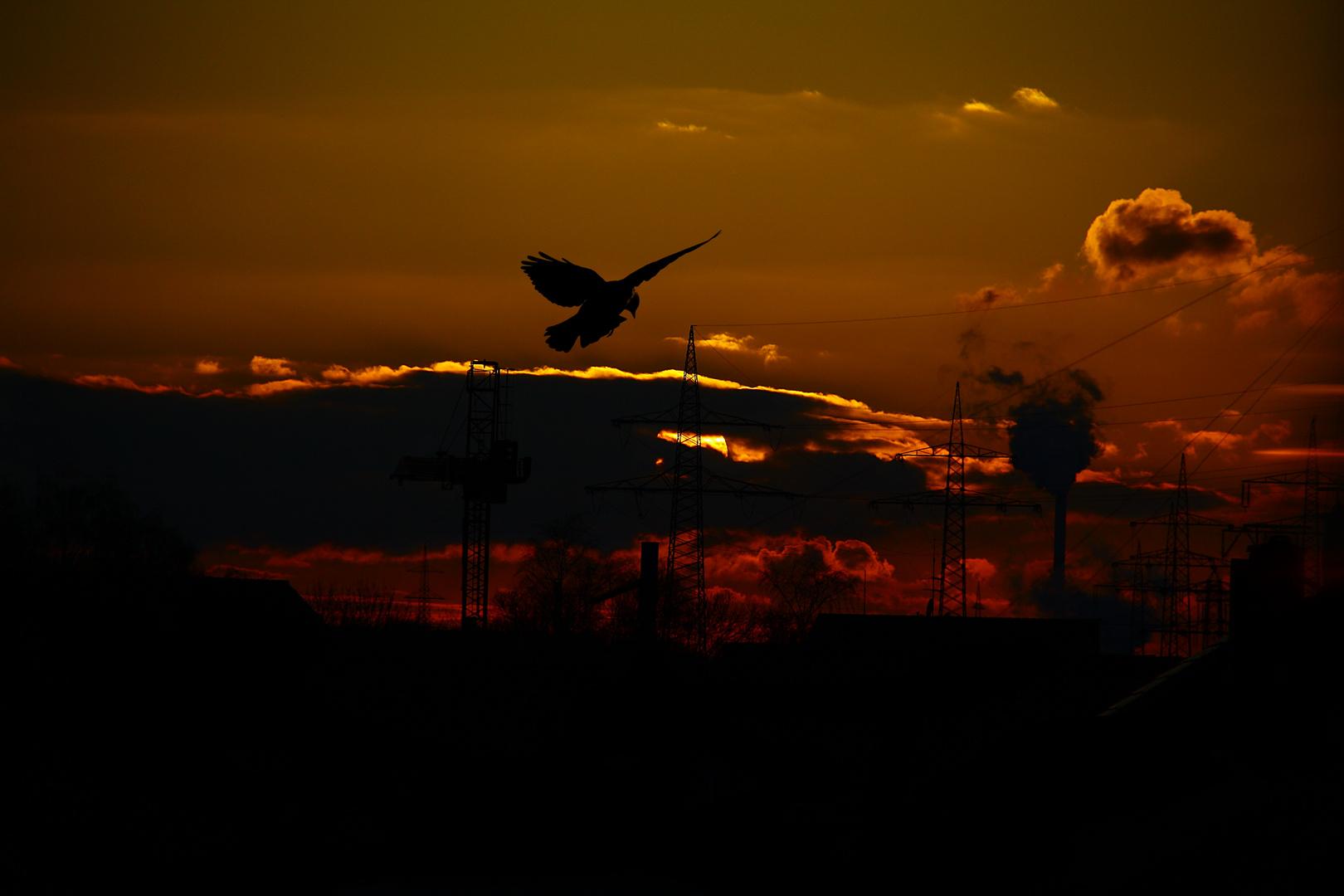 Sonnenuntergang in der Industrie