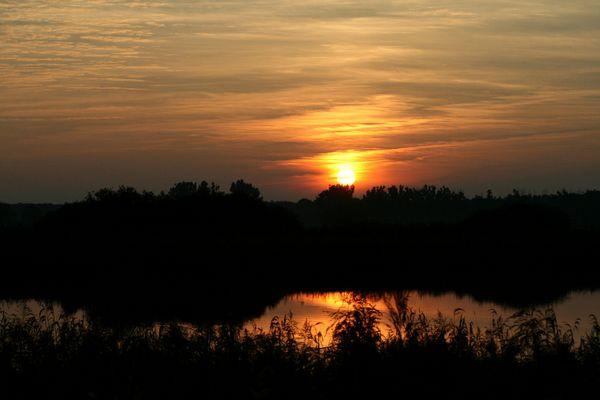 Sonnenuntergang in der Lewitz (Mecklenburg-Vorpommern)