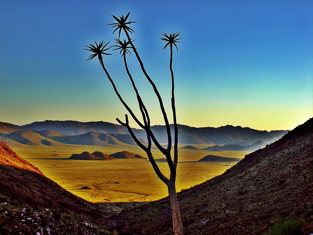 Sonnenuntergang in der Namib