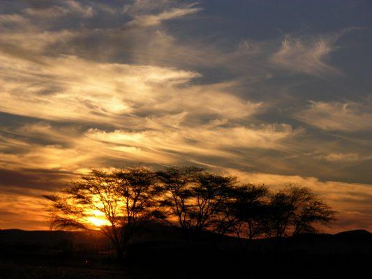 Sonnenuntergang in der Savanne