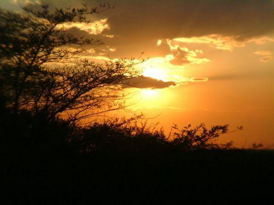 Sonnenuntergang in der Serengeti...