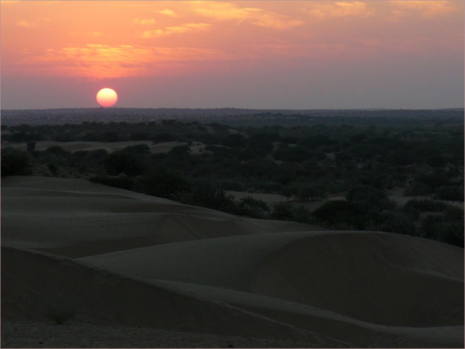 Sonnenuntergang in der Thar-Wüste