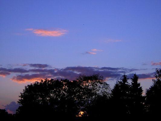 Sonnenuntergang in der Wedeler Marsch