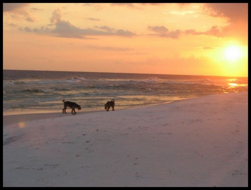 Sonnenuntergang in Destin, Florida