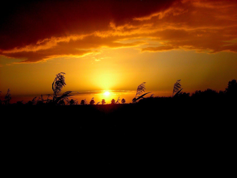 Sonnenuntergang in Dithmarschen