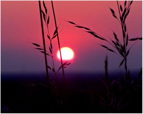 Sonnenuntergang in Dorsten
