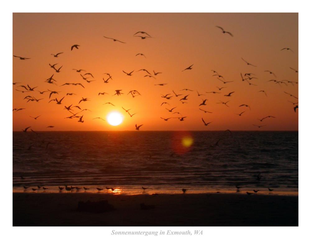 Sonnenuntergang in Exmouth, WA
