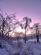 Sonnenuntergang in Hahnenklee am Kranichsee