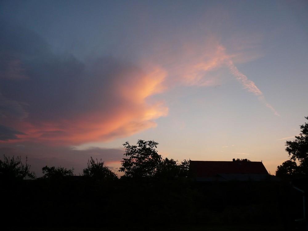 Sonnenuntergang in Hamburg Neuenfelde