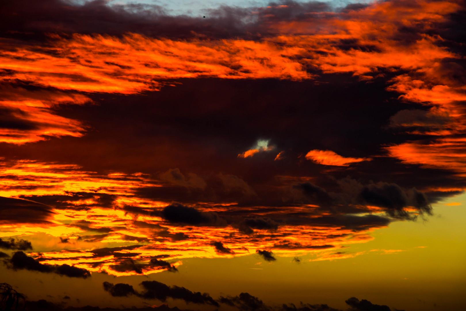 Sonnenuntergang in Hattersheim