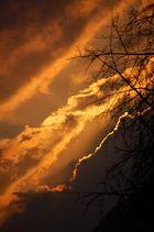 Sonnenuntergang in Herdecke (12.01.2008)
