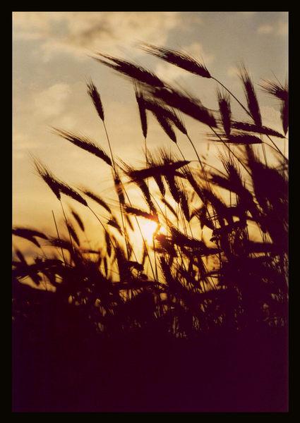 Sonnenuntergang in Italien