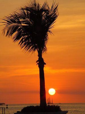 sonnenuntergang in key west florida