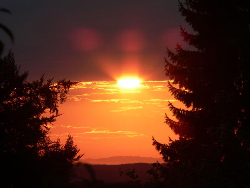 Sonnenuntergang in Loffenau