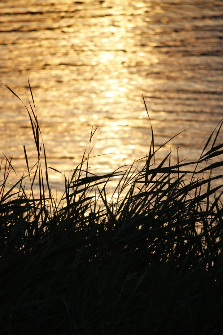 Sonnenuntergang in Malchow.