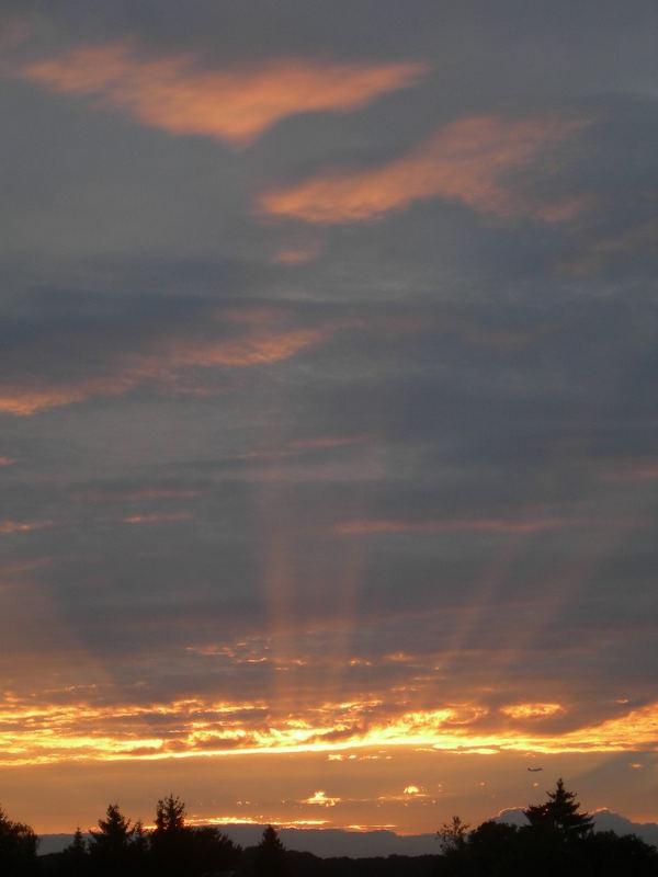 - Sonnenuntergang in meinem Kuhdorf ;) - inklusive Flugzeug ;)