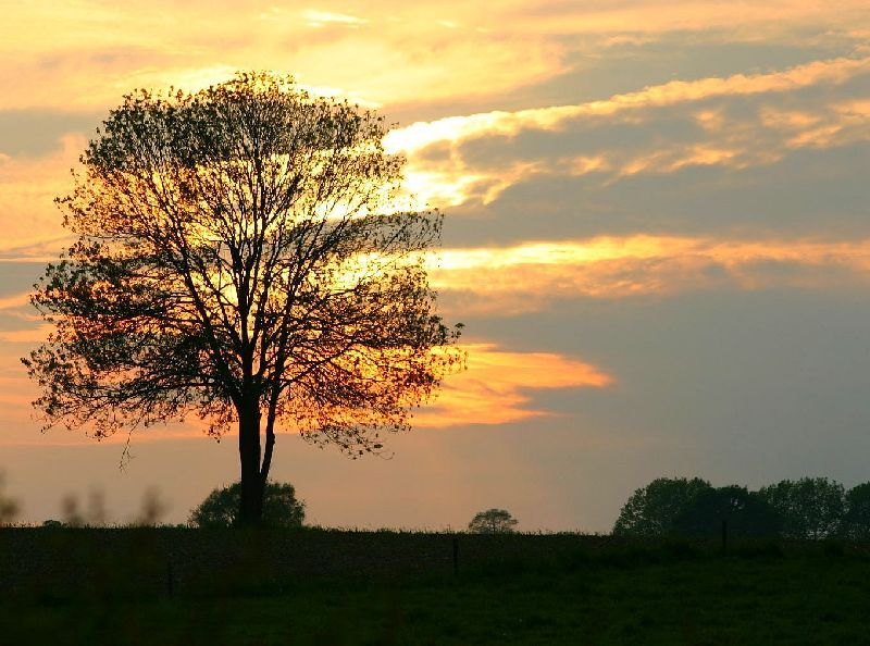 Sonnenuntergang in Ostbelgien