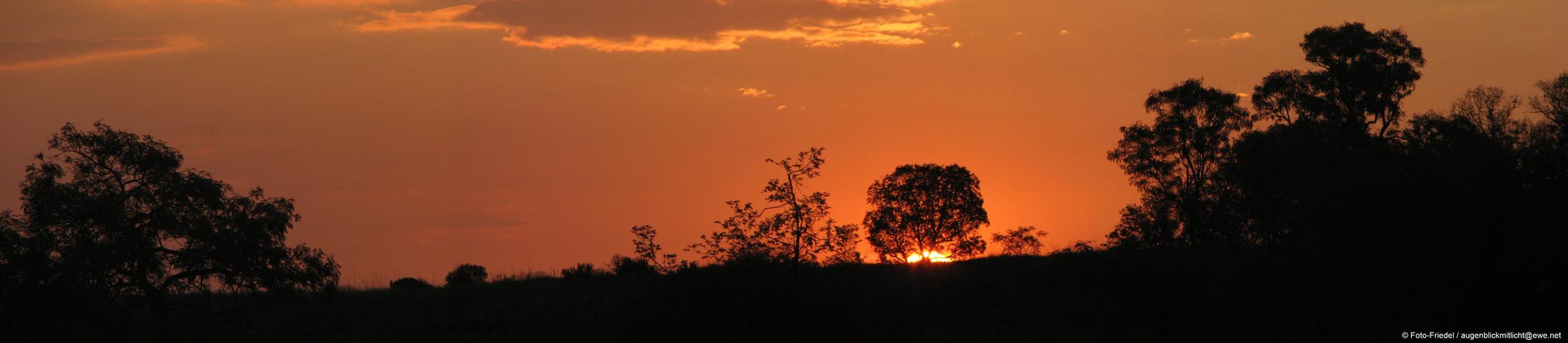 Sonnenuntergang in Renosterpoort
