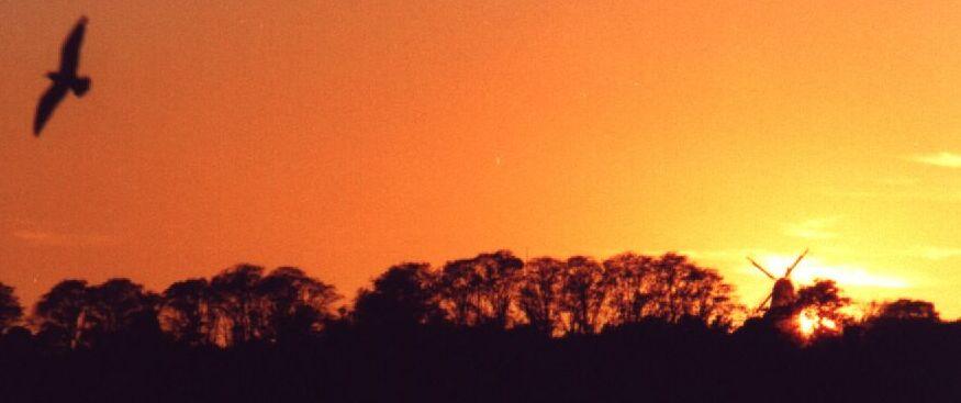 Sonnenuntergang in Sonderburg