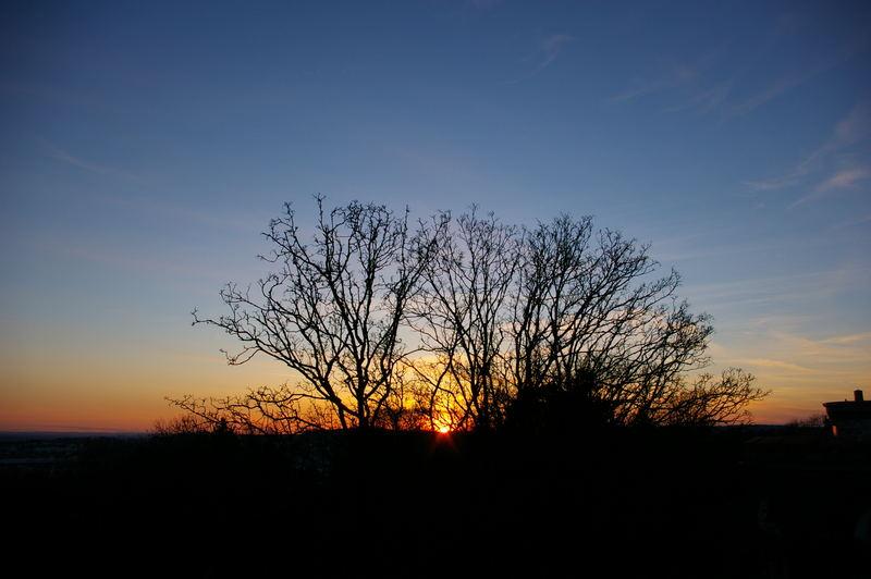 Sonnenuntergang in Ulm