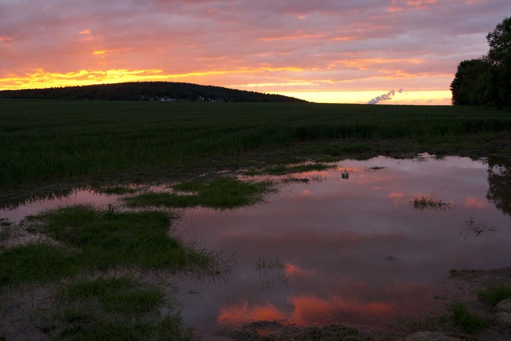 Sonnenuntergang in unserer Pfütze