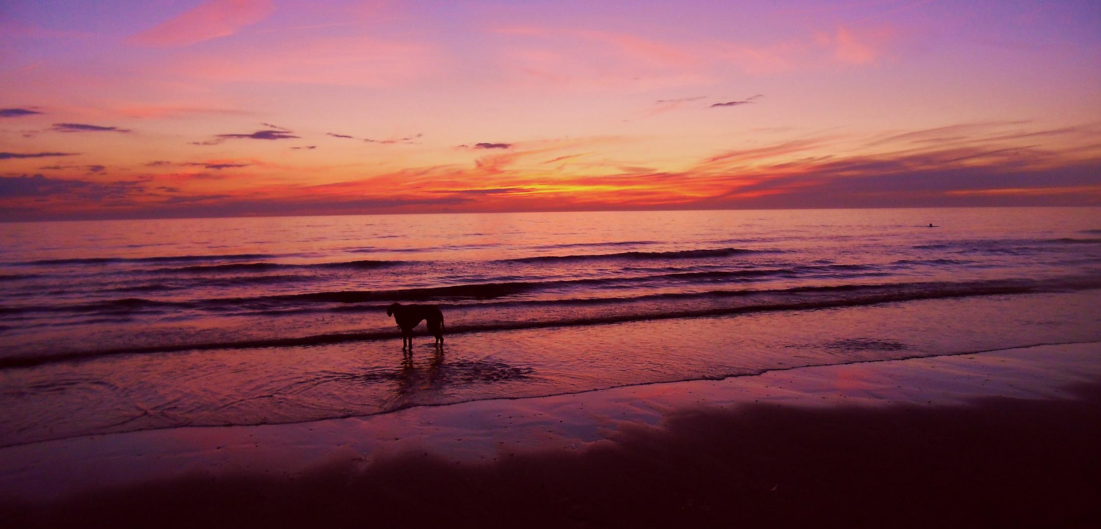 Sonnenuntergang in Zandvoort