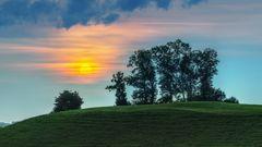 Sonnenuntergang mit Baumgruppe
