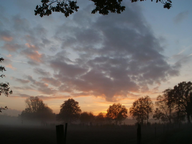 Sonnenuntergang mit Bodennebel