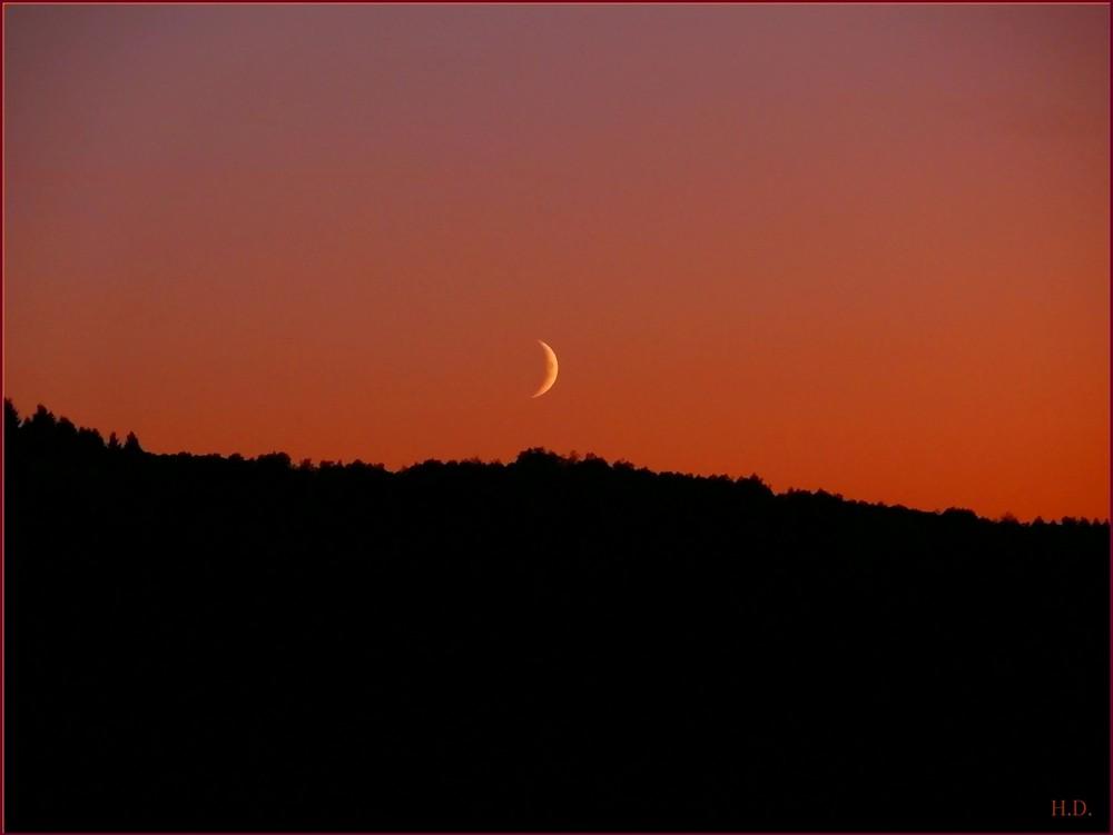 Sonnenuntergang mit Mond