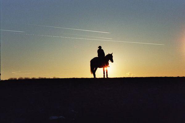 Sonnenuntergang mit Pferd