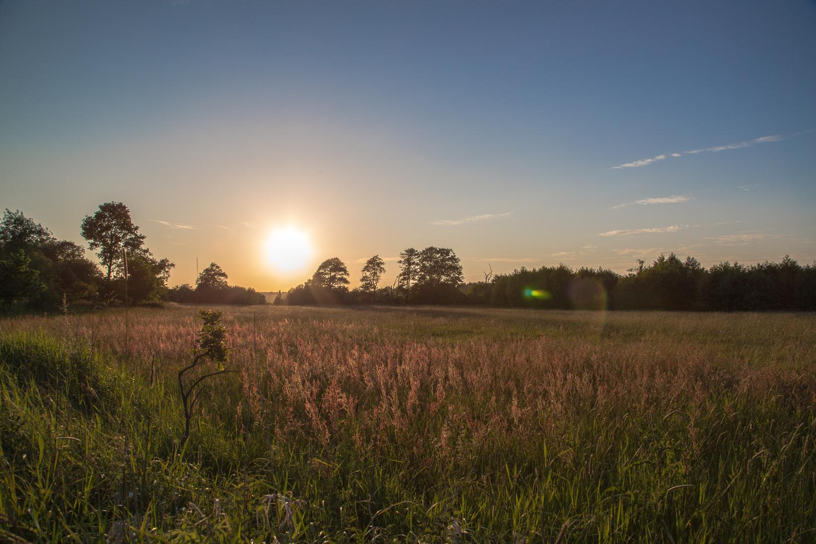 Sonnenuntergang nahe der Wümme