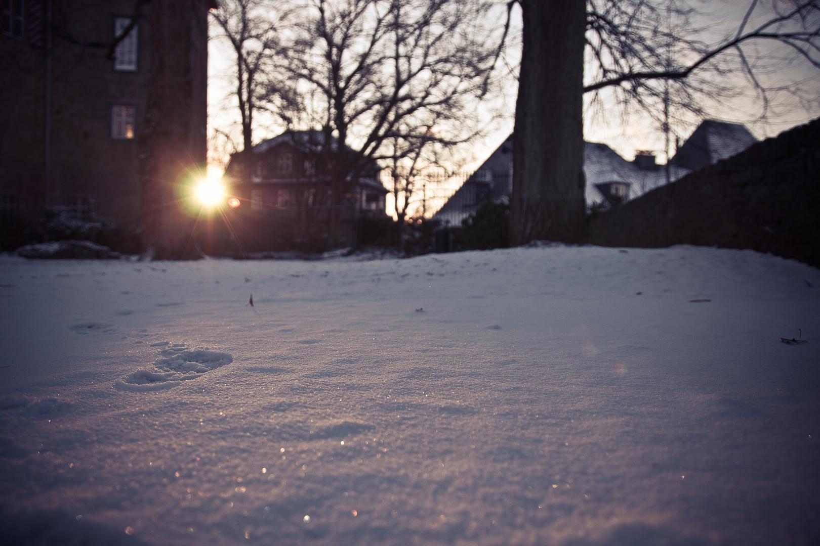 Sonnenuntergang Schlossgarten