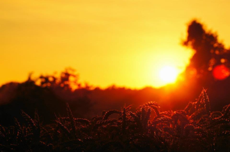 Sonnenuntergang Süd-Oststeiermark