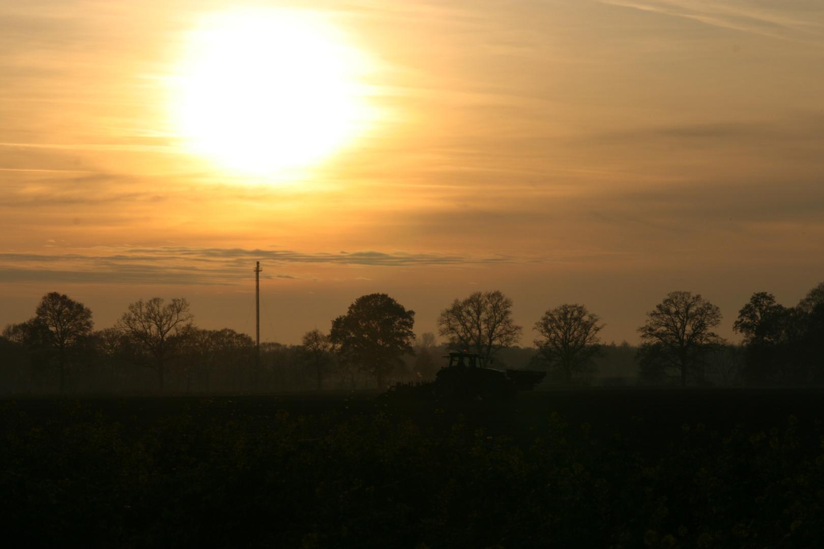 Sonnenuntergang Thülsfelde
