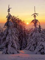 Sonnenuntergang Thüringer Winterwald
