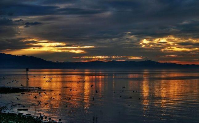Sonnenuntergang über dem Bodensee