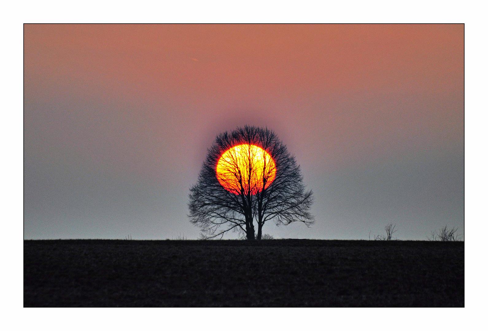 Sonnenuntergang über dem Rheingau