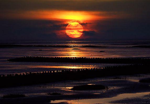 Sonnenuntergang -  über den Buhnen