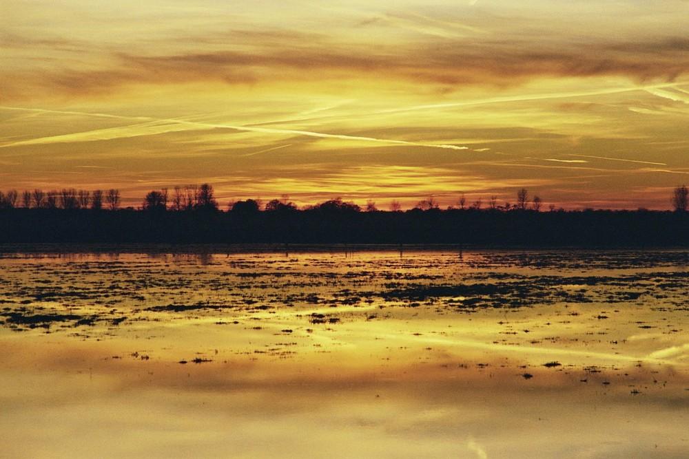 Sonnenuntergang über den Dümmerwiesen