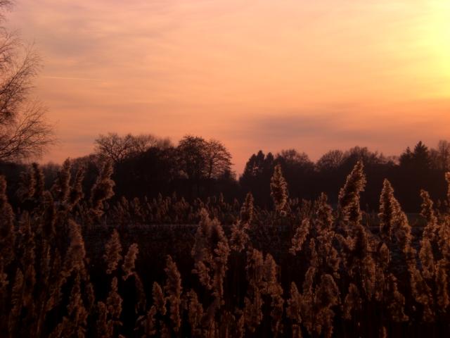 Sonnenuntergang über der Hunte