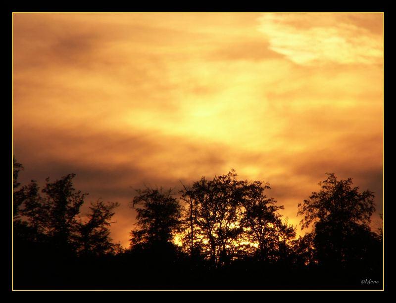 Sonnenuntergang über der Savanne von Wiltingen