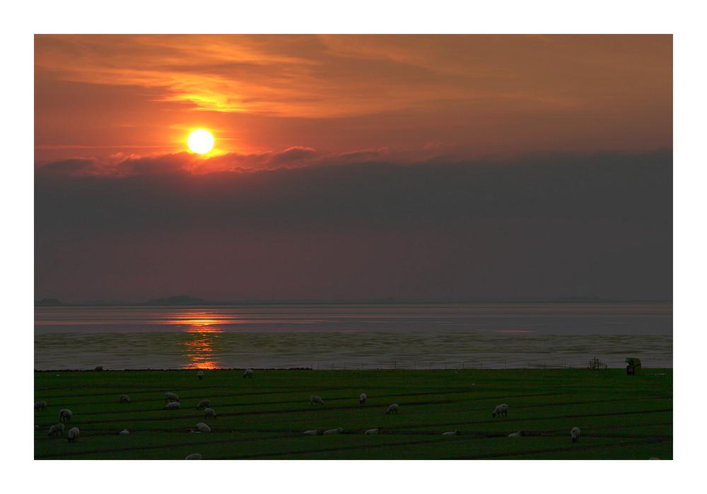 Sonnenuntergang über Hallig Hooge